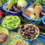 vegetables2 (2)